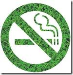 No Smoking (3)