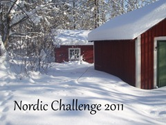 Nordic Challenge 2011 from Reading in the North