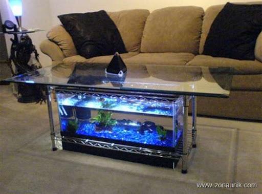 aquarium04