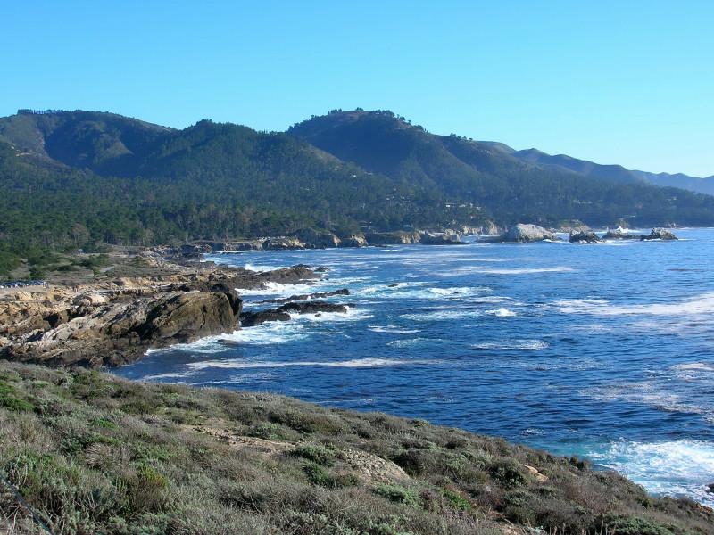 Point Lobos Scenery