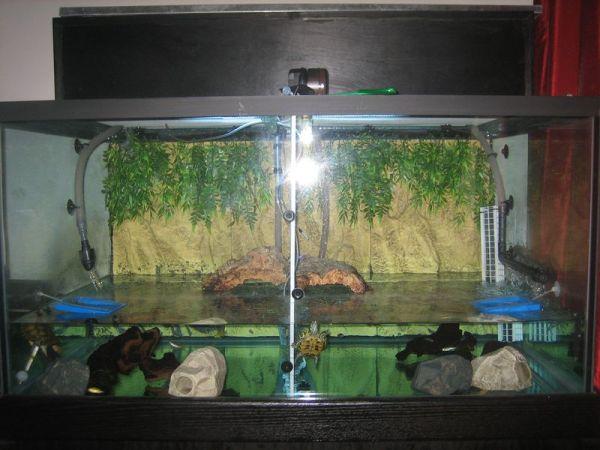 150 gallon pet turtle tank
