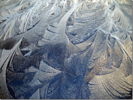photoshare Morning Frost Art on the Car Kingfisher OK tim3jones
