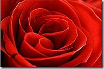 2010-01-07 18 29 40