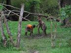 mud and playing kids