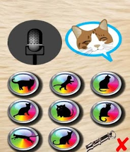 translator talking cat screenshot 1