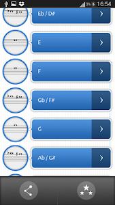 Pro Flute Fingerings Free screenshot 0