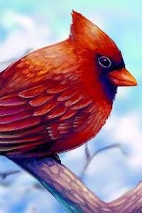 How to Draw Bird Animal screenshot 1