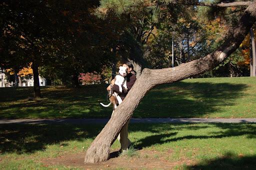 Caught Tree Climbing
