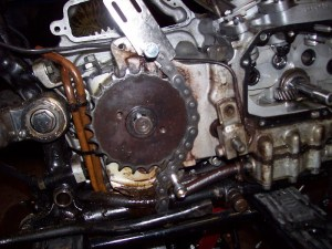 1977 Sportster Wiring Diagram 1977 Sportster Oil Filter