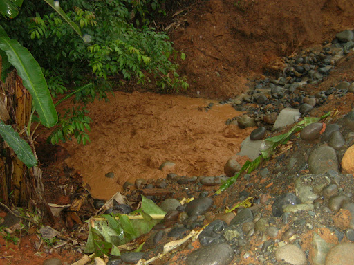 Toneladas de sedimentos que van al Rio Changuinola y al Rio Risco
