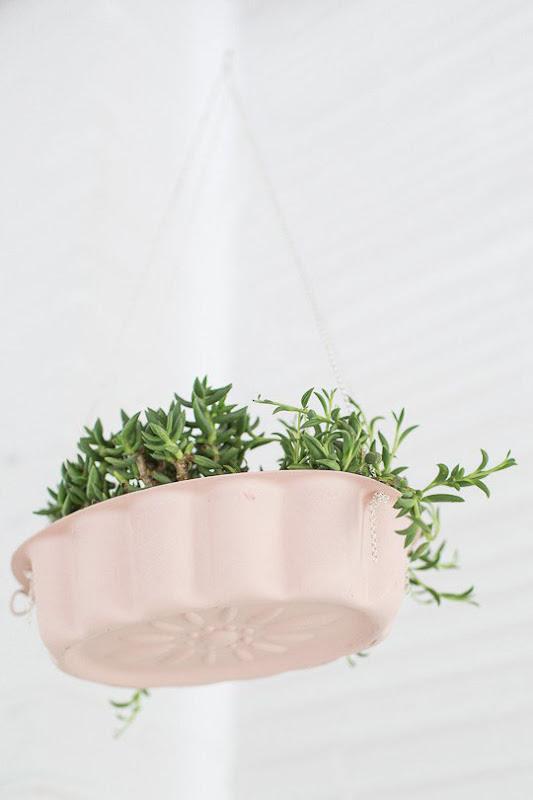 Decorar la cocina con plantas en  moldes