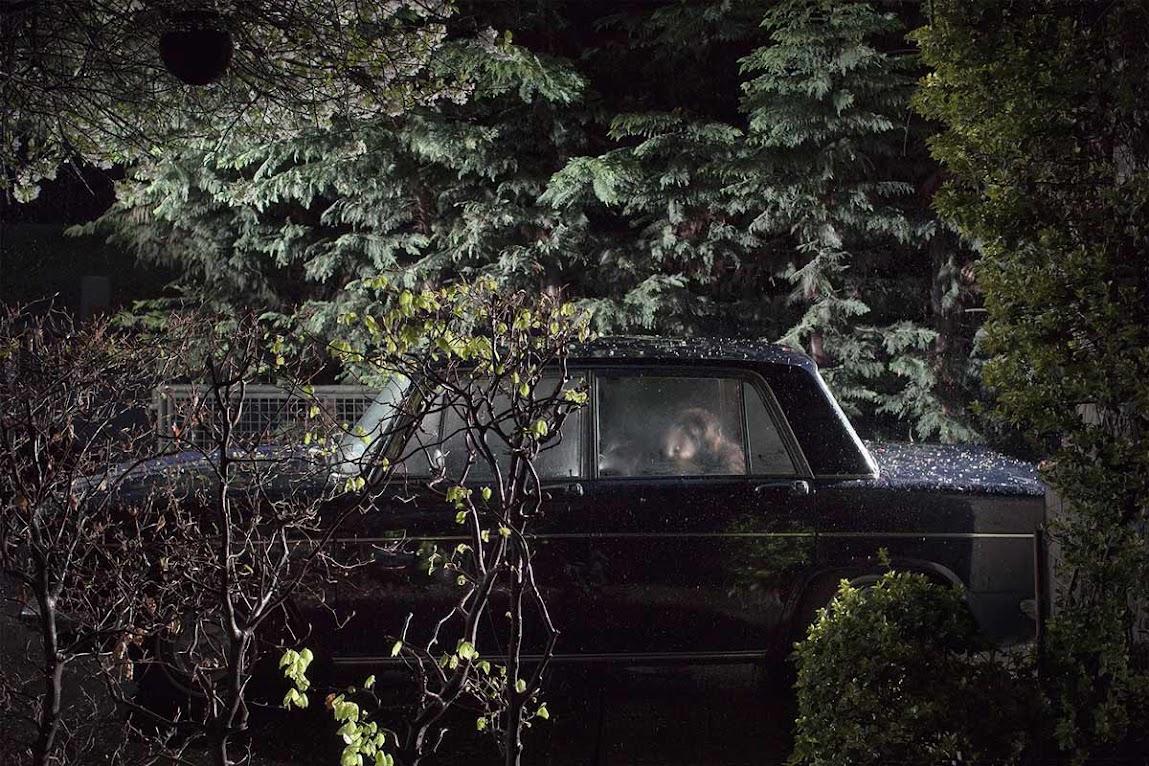 *被鎖在車內沉默的狗:攝影師Martin Usborne 黑暗呈現! 3