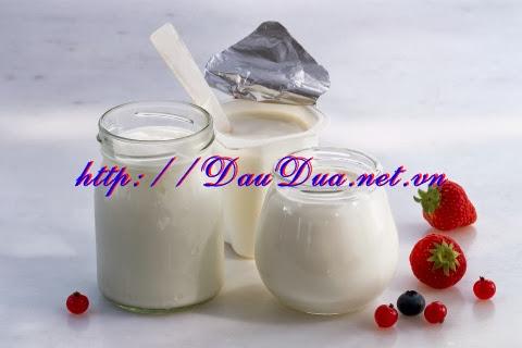 Dầu dừa và sữa chua dùng đắp mặt nạ
