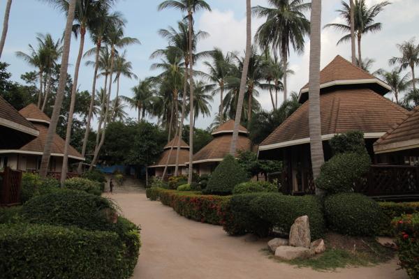 coral grand resorts thailand ko tao, padi certification at coral grand divers