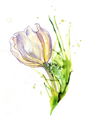 Amy Holliday Illustration Spring Flowers