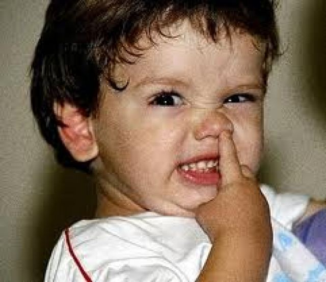 Resultado de imagem para meleca do nariz