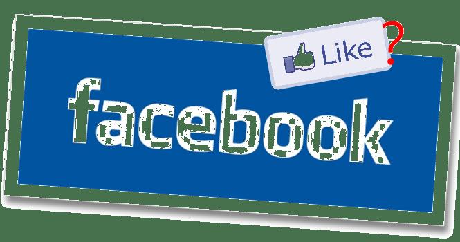你網站上Facebook讚來自於哪?