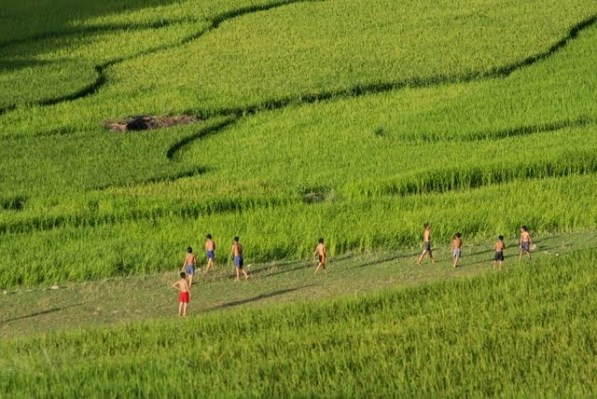 trekking sapa valley vietnam
