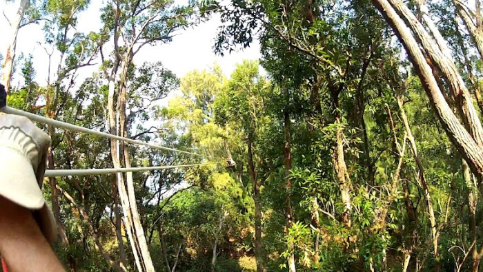 Kohala Zipline course in Big Island