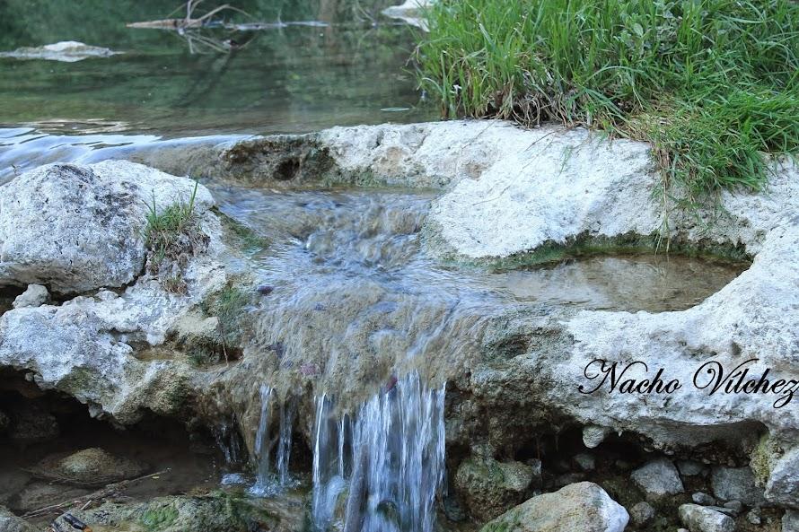 Embalse y río Colomera 06.04.14 (4/6)