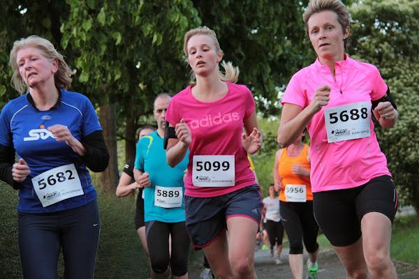 Hanne Casteleyn, Dwars over de Mandel 2014
