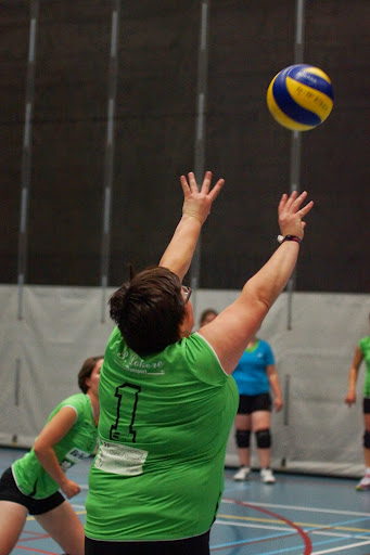 volare volley