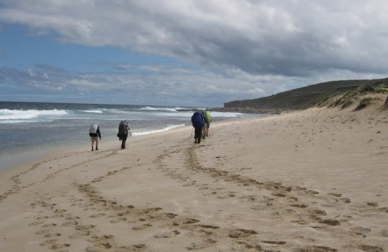 Kabbijigup Beach, Cape to Cape Track