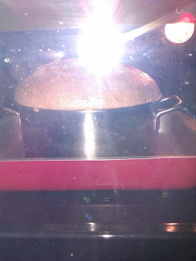 moka chiffon cake! — FOTO —