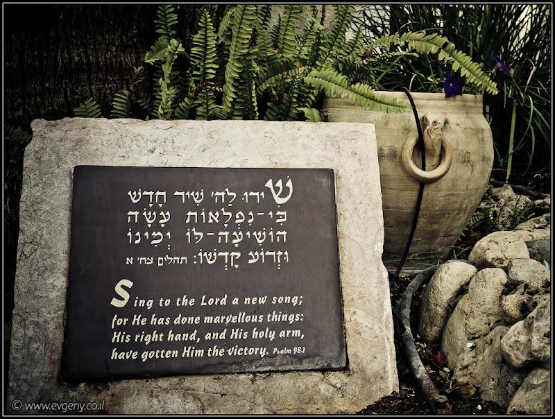 Одно фото / Израиль, Тель Авив, Флорентин