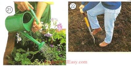Bahçecilik - Konut - Fotoğraf Sözlük