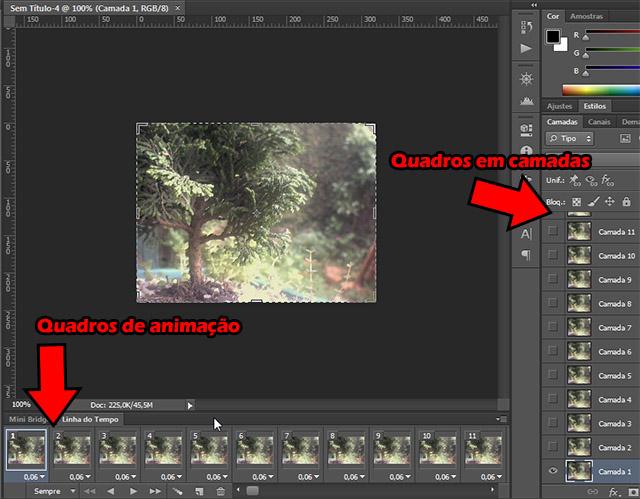 Quadros do vídeo na janela de animação e em camadas
