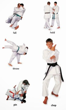 action fall, hold, throw, pin, chop