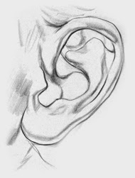 Draw ear step 3