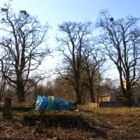 Renowacja cmentarza ewangelickiego w Toruniu - Stawkach, przy ul. Łącznej 38