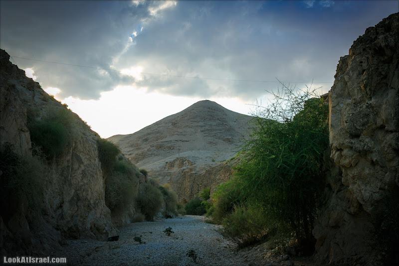 Вади Кельт (Нахаль Прат)