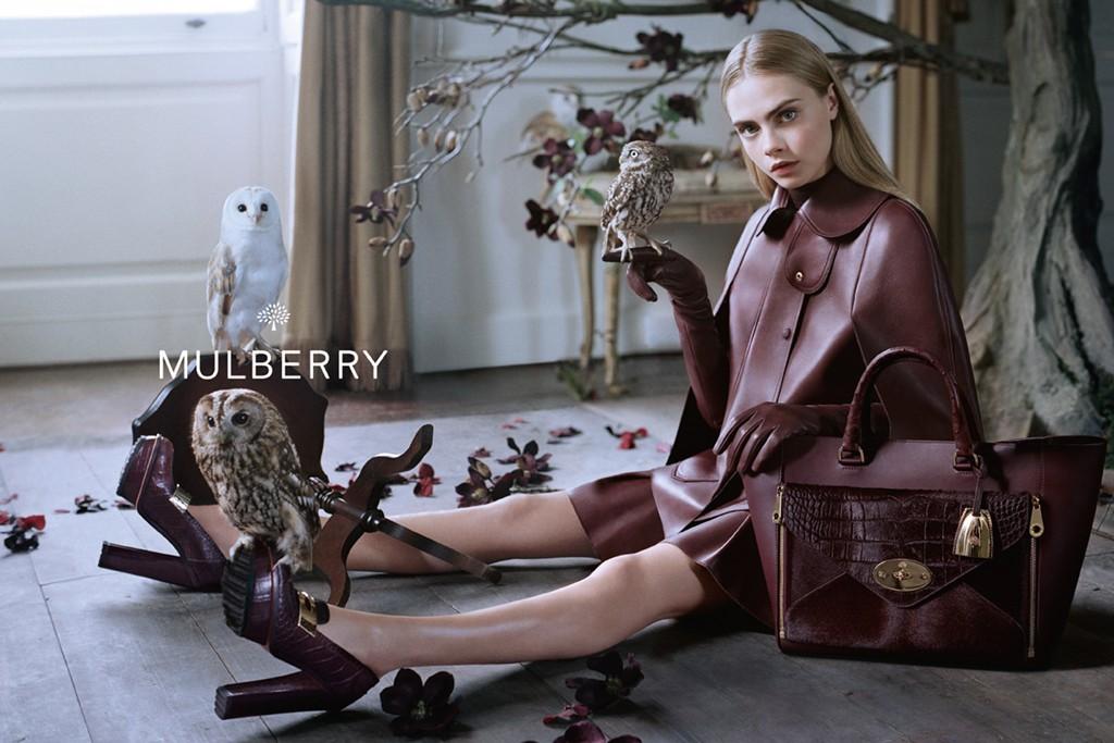 *名模Cara Delevingne手托貓頭鷹:首度拍攝Mulberry秋季形象照! 1
