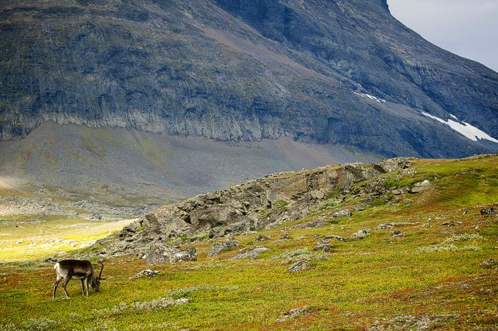 Kungsleden (25 Best Hikes in the World).