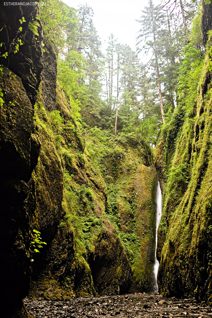 Oneonta Gorge Trail // Best Hikes in Oregon.