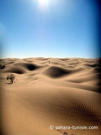 le luxe du sahara
