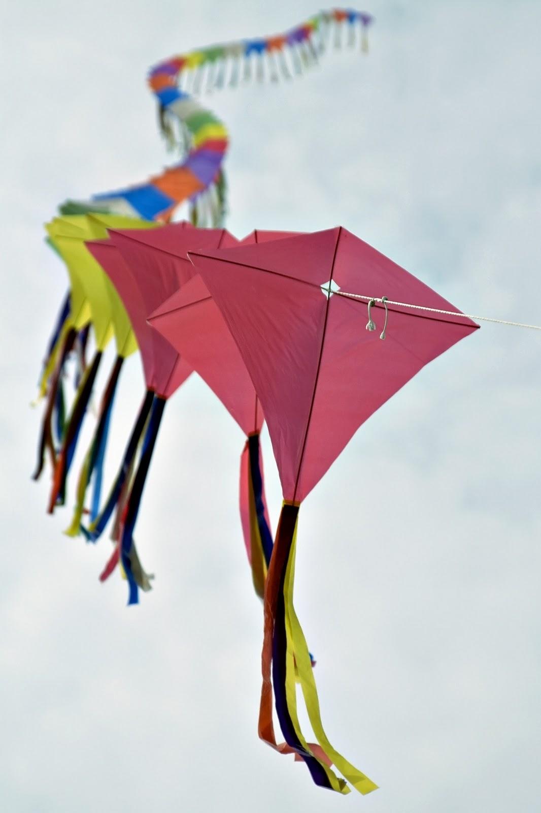 Unit Stu S By Amanda Bennett Blog Tour Kite Capers