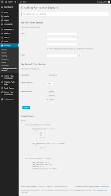 Organizing a Form with Sections with Admin Page Framework