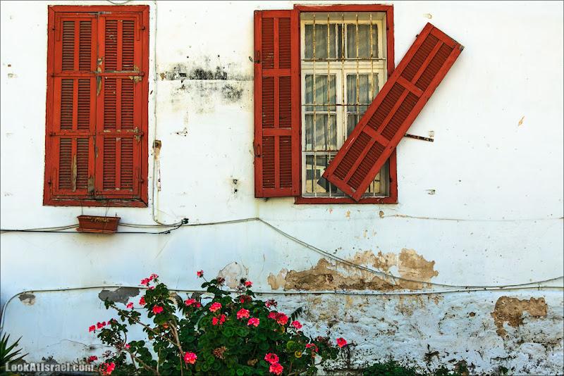 Окна Тель Авива