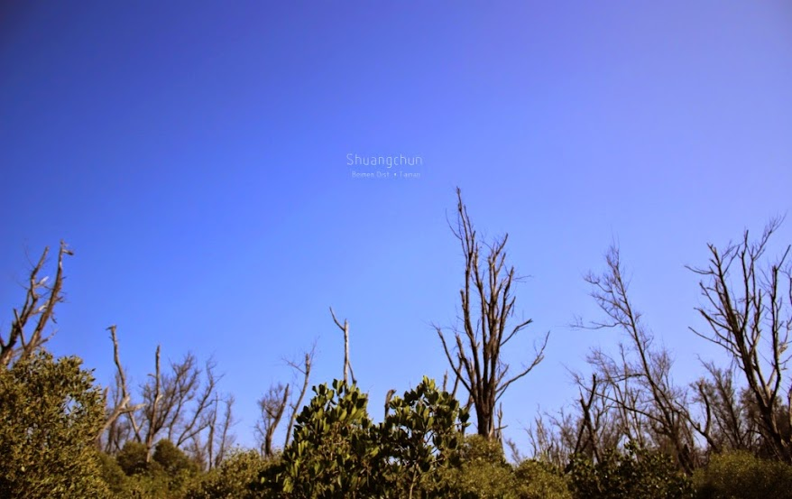 台南北門雙春濱海遊憩區