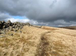 Caudale Moor