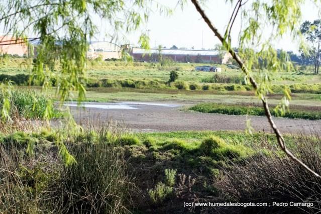 Meandro del Say seco