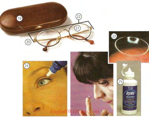 Dental and eye care- Health - Photo Dictionary Online