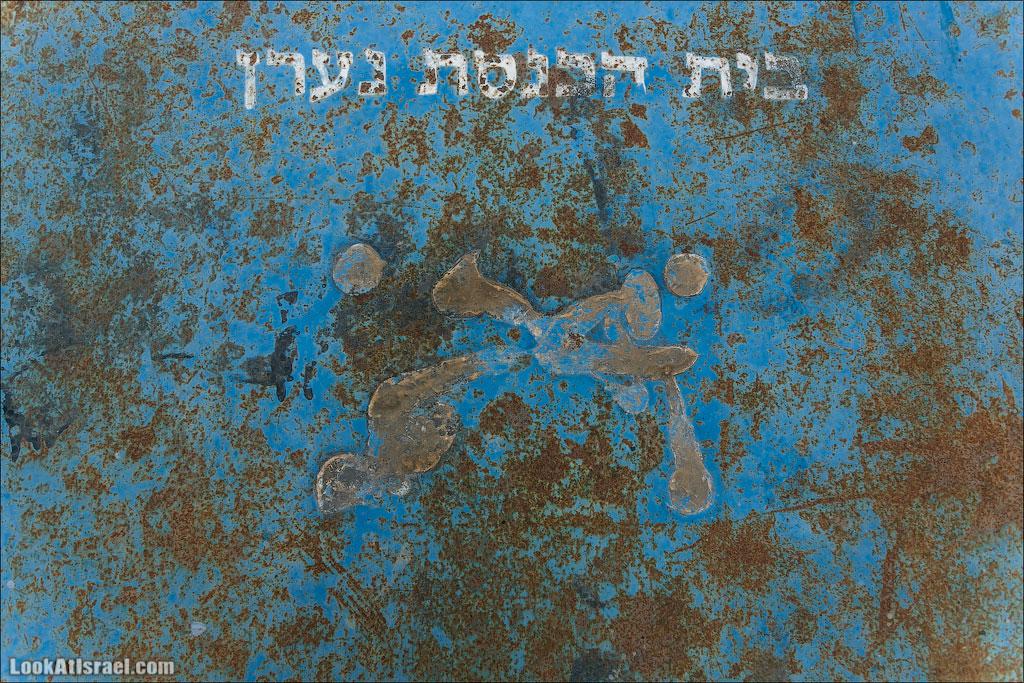 О синагоге в Нааране и олене с прямыми ногами