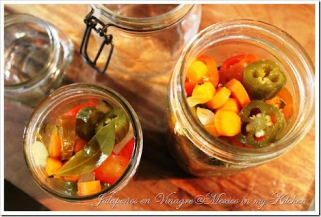 Jalapeños en Vinagre Pickles7