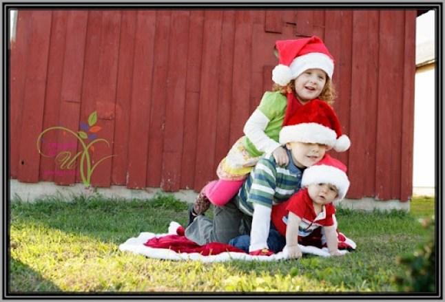 Christmas-Mini-Sample-4697
