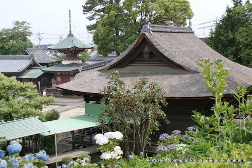 性海寺本堂と多宝塔